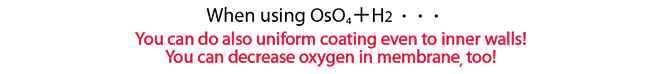 Using the combination of Os04+H2 allows for smooth coating even on the inner wall! Also reduces membrane oxygen!