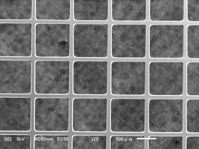 SUS304 材质 栅极网格生产案例
